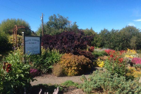 Master Gardeners Park 2016 - Port Townsend, WA