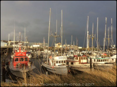 Port Townsend Boat Haven, Port Townsend, WA